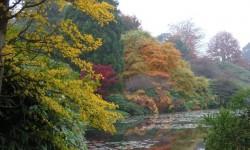 autumn 22.jpg