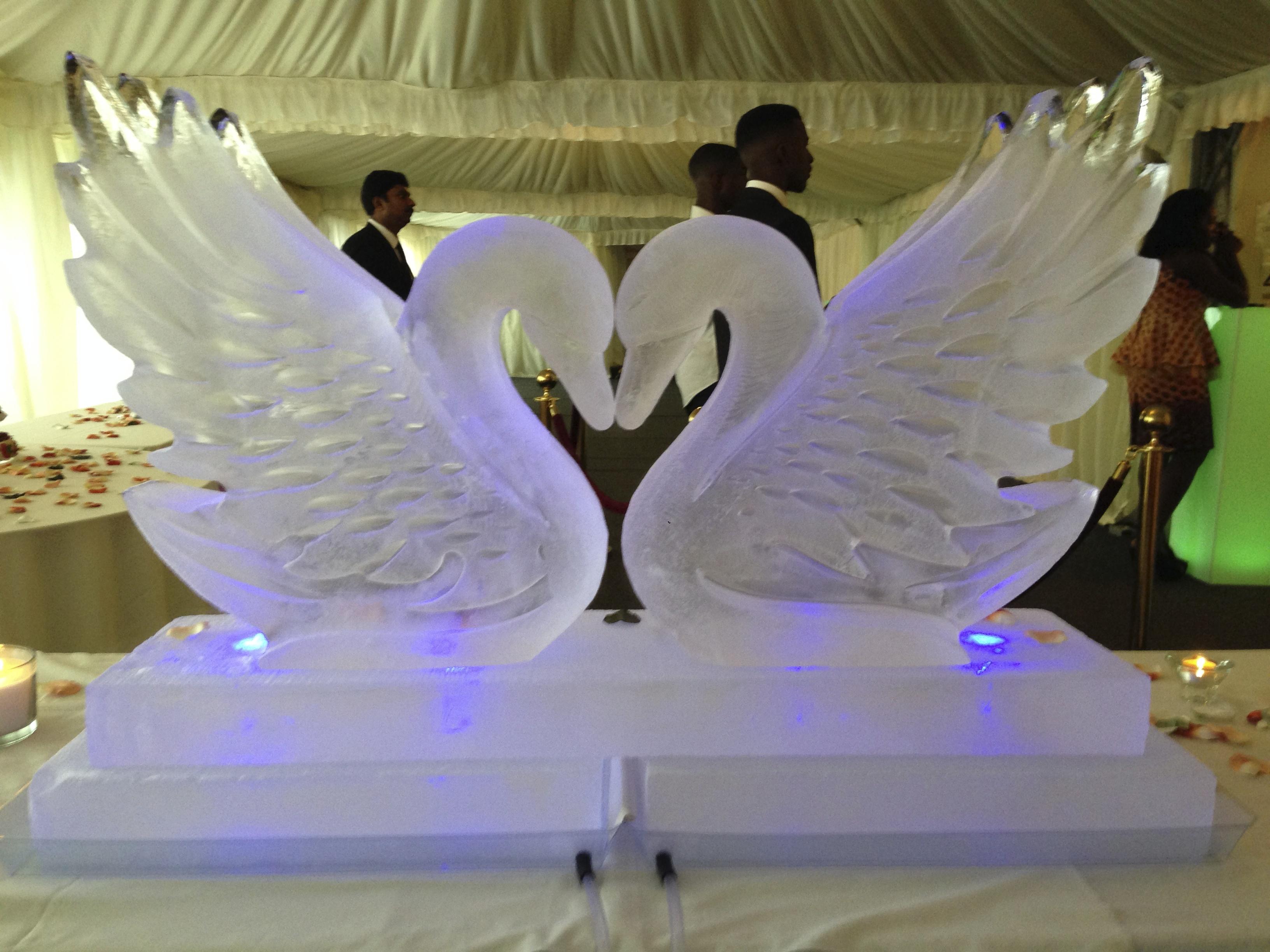 kissing swans.jpg